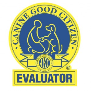 CGC_Evaluator_Logo.8081533_std